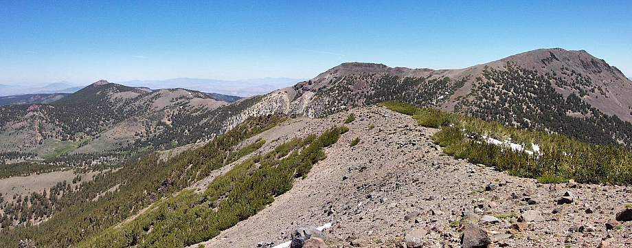 Mt Houghton